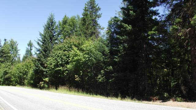 00 E Hayden Lake Rd, Hayden Lake, ID 83835 (#20-8093) :: ExSell Realty Group