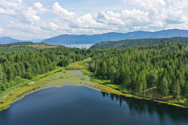 Lot 9 Chippewa Trail, Sagle, ID 83860 (#20-8097) :: Amazing Home Network