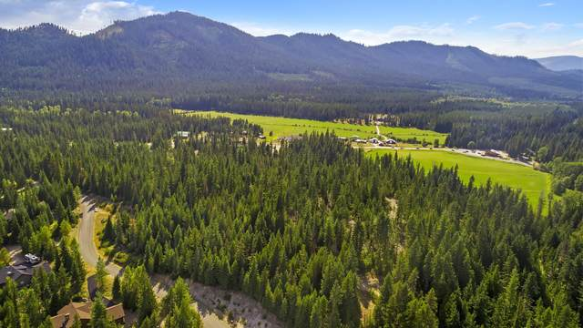 Lot 4 Long Dr, Priest Lake, ID 83856 (#20-8314) :: Chad Salsbury Group