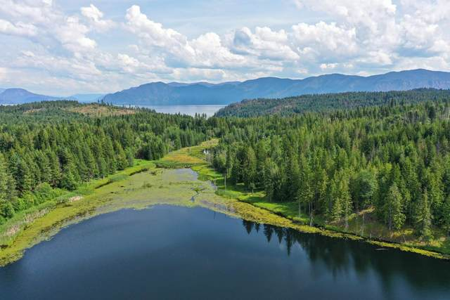 Lot 6 Chippewa Trail, Sagle, ID 83860 (#20-8408) :: Amazing Home Network