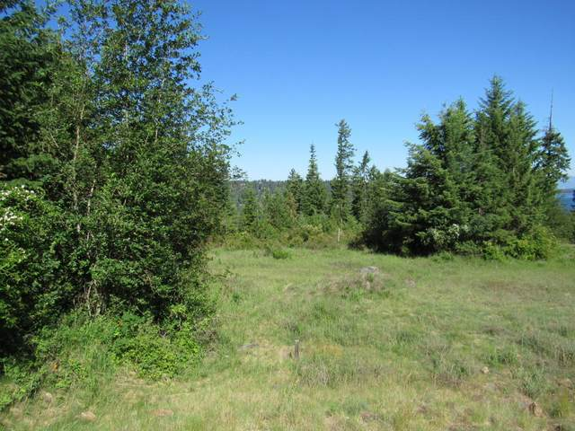 Lot 8 Mariposa Ct., Harrison, ID 83833 (#20-8596) :: Team Brown Realty
