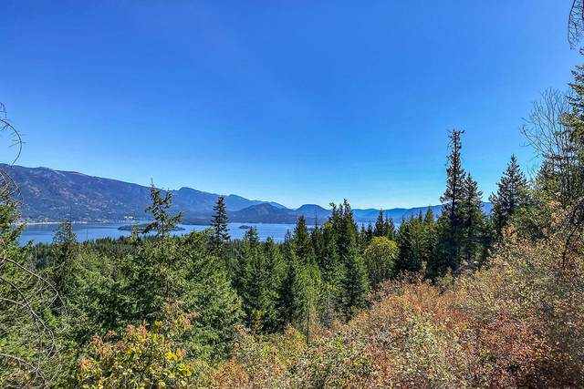 Lot 4 Terry's Lane, Sagle, ID 83860 (#20-9089) :: Link Properties Group