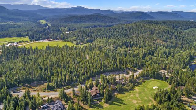 Blk 13 LO Long Dr, Priest Lake, ID 83856 (#20-9120) :: Flerchinger Realty Group - Keller Williams Realty Coeur d'Alene