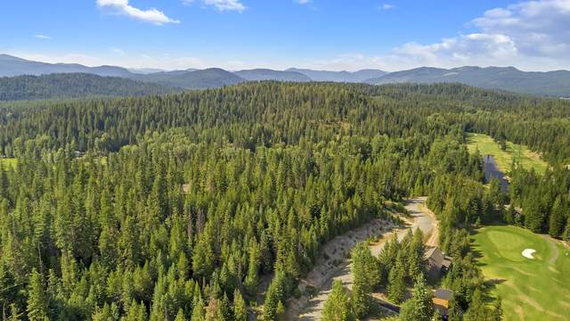 Blk 13 LO Long Dr, Priest Lake, ID 83856 (#20-9125) :: Chad Salsbury Group