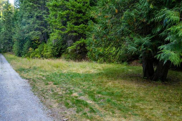 710 Nine Mile Creek Rd, Wallace, ID 83873 (#20-9198) :: Prime Real Estate Group