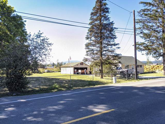 823 Baldy Mountain Rd., Sandpoint, ID 83864 (#20-9281) :: Link Properties Group
