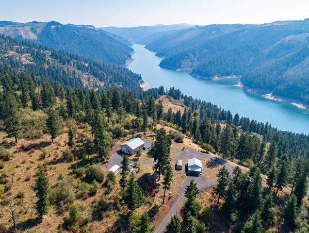 373 Carey Dr, Orofino, ID 83544 (#20-9454) :: Prime Real Estate Group