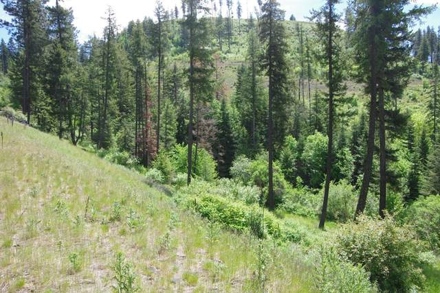 Lot29 Blk2 Ledgestone Rd, Harrison, ID 83833 (#20-9475) :: Mall Realty Group