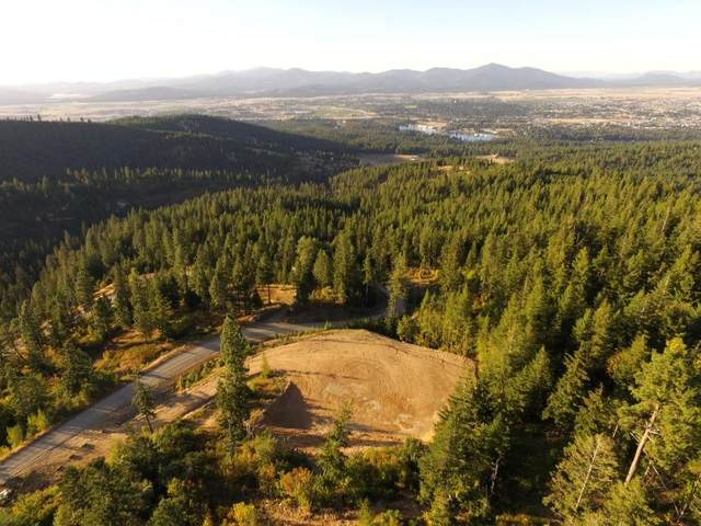 LT 2 BLK A S Veterans Drive, Post Falls, ID 83854 (#20-9518) :: Chad Salsbury Group