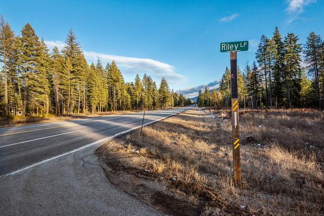 Lot 10 E Riley Loop, Athol, ID 83801 (#20-9690) :: Mall Realty Group