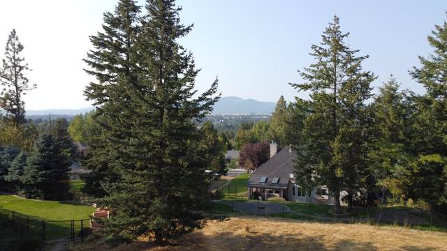 2177 E Grandview Dr, Coeur d'Alene, ID 83815 (#20-9853) :: Link Properties Group