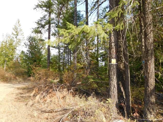 Cabin Ridge, Spirit Lake, ID 83869 (#20-9985) :: Embrace Realty Group