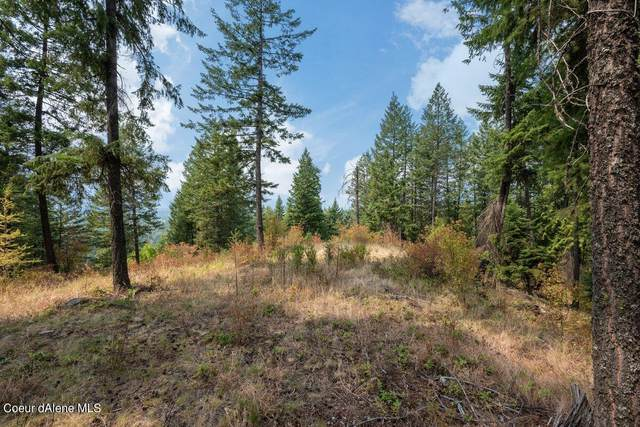 NNA  C21 Trapper's Loop, Sandpoint, ID 83864 (#21-10037) :: Amazing Home Network