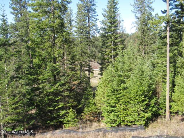 Lot 124 Echo Canyon, Harrison, ID 83833 (#21-10110) :: Keller Williams CDA