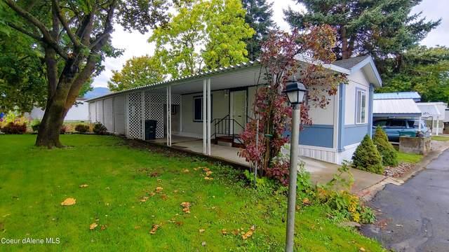 900 N Idaho St #310, Post Falls, ID 83854 (#21-10195) :: Prime Real Estate Group