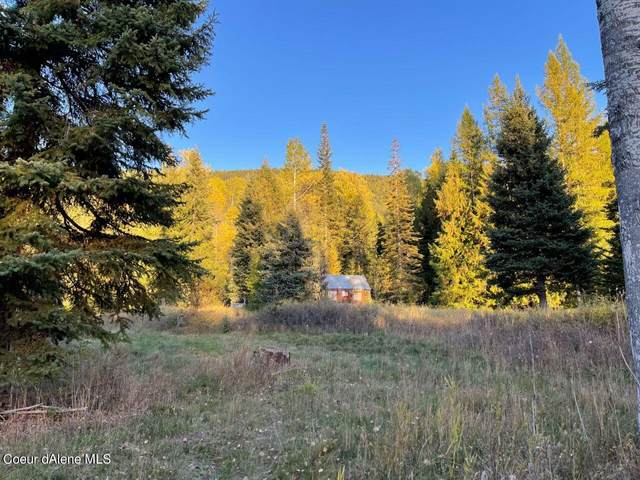 562 Fortyniner Ln, Bonners Ferry, ID 83805 (#21-10467) :: Link Properties Group