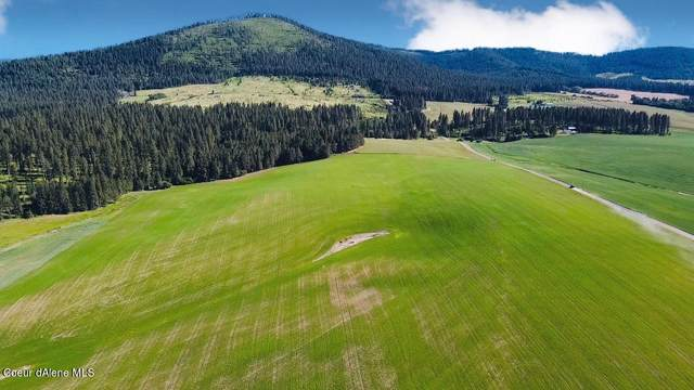 NKA Lot A Old Mills Rd, Desmet, ID 83824 (#21-10532) :: Amazing Home Network