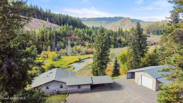 738 Meadow View Rd, St. Maries, ID 83861 (#21-10617) :: Amazing Home Network