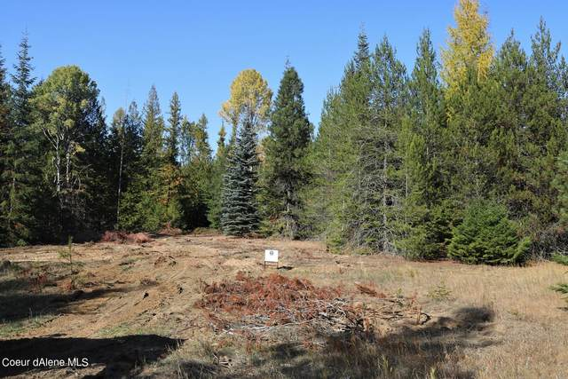 802 Fish Creek Rd Dc2, Cocolalla, ID 83813 (#21-10678) :: Link Properties Group