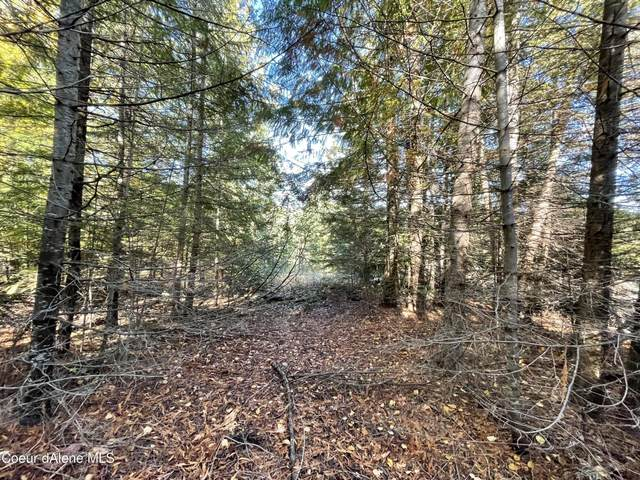 Lot 6 Rustic Way, Spirit Lake, ID 83869 (#21-10750) :: Flerchinger Realty Group - Keller Williams Realty Coeur d'Alene