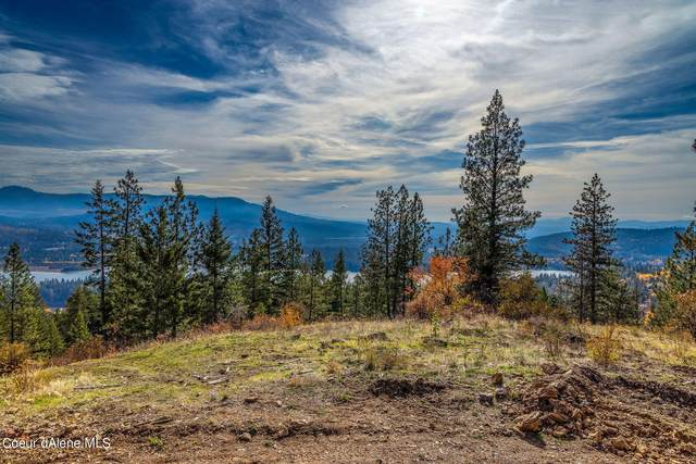 NNA Pine Leaf Rd, Priest River, ID 83856 (#21-10794) :: Kroetch Premier Properties