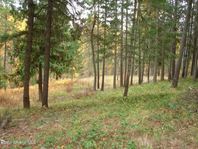 NNA Meadow Creek Rd, Bonners Ferry, ID 83805 (#21-10797) :: Kroetch Premier Properties
