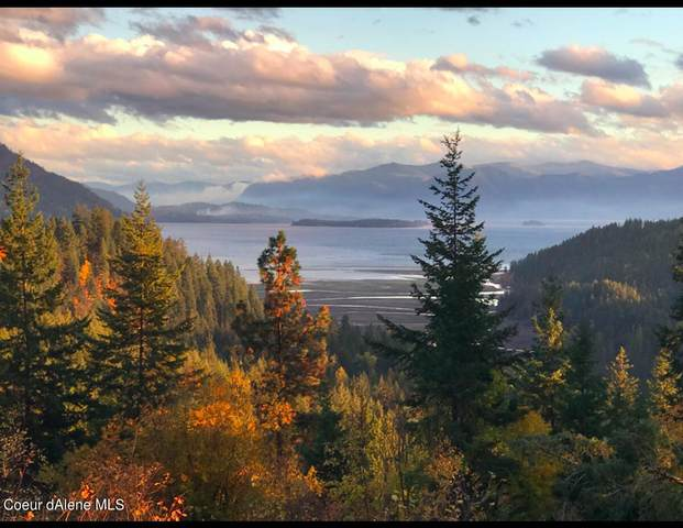 Lot D12 White Cloud Dr, Sandpoint, ID 83864 (#21-10884) :: Team Brown Realty