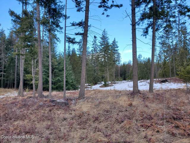 NKA Paradise Valley Rd, Bonners Ferry, ID 83805 (#21-1401) :: ExSell Realty Group