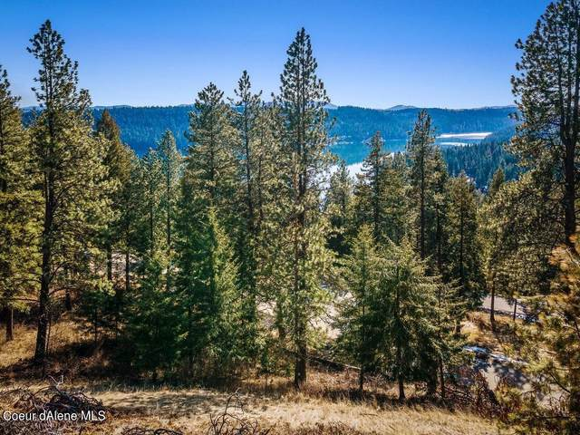 Lot 13 S Cordillera St., Worley, ID 83876 (#21-1648) :: Embrace Realty Group