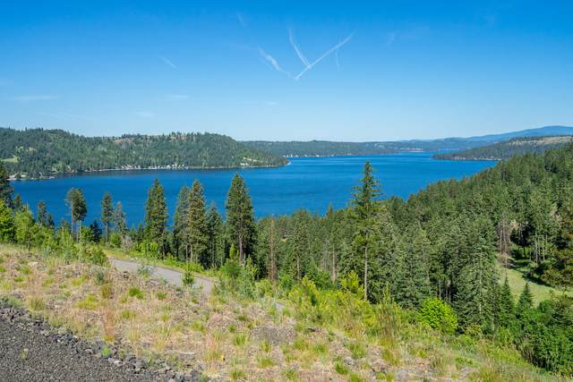 Lot63 Blk3 Bedrock Dr, Harrison, ID 83833 (#21-1683) :: Chad Salsbury Group
