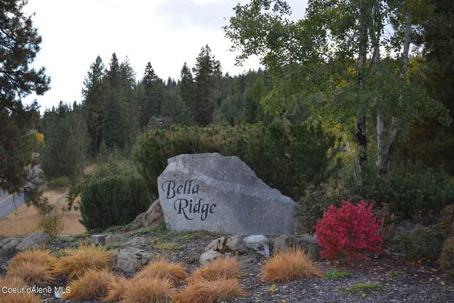 10795 W Bella Ridge Dr, Coeur d'Alene, ID 83814 (#21-1692) :: Team Brown Realty