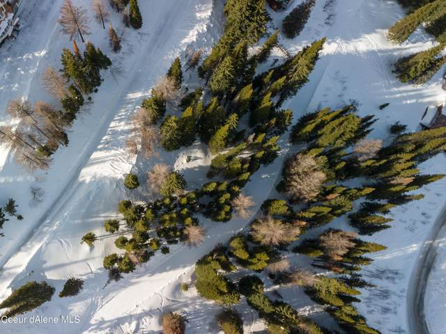 NNA Crystal Ct Blk E Lot 1, Sandpoint, ID 83864 (#21-1713) :: Northwest Professional Real Estate