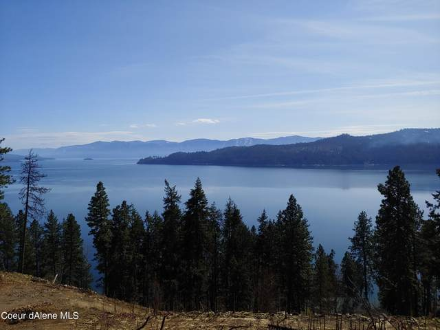93 Farkle Flats St, Sandpoint, ID 83864 (#21-2215) :: CDA Home Finder