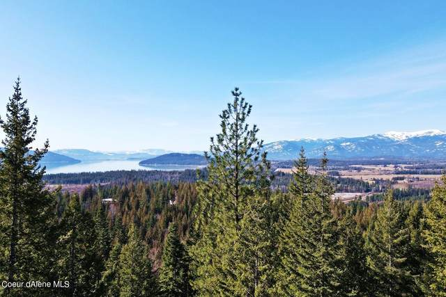 Lot E28 Wildridge Way, Sandpoint, ID 83864 (#21-2328) :: ExSell Realty Group
