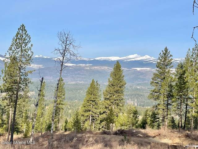 nka Stoney Trail Road, Naples, ID 83847 (#21-2781) :: Five Star Real Estate Group