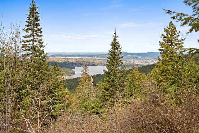 4517 S Idaho Rd, Post Falls, ID 83854 (#21-2996) :: Five Star Real Estate Group