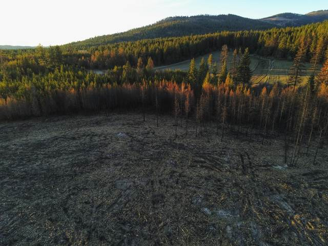 Lot 4 Stetson Ct, Blanchard, ID 83804 (#21-3082) :: Team Brown Realty