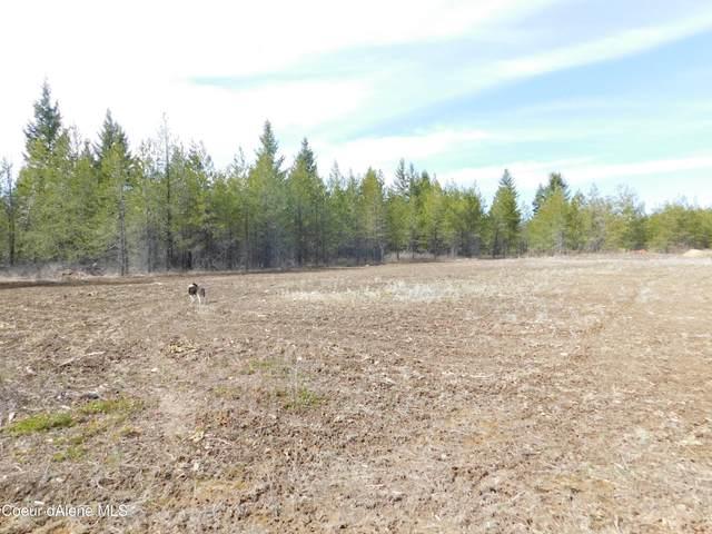 436 Satchel Dr, Spirit Lake, ID 83869 (#21-3112) :: Team Brown Realty