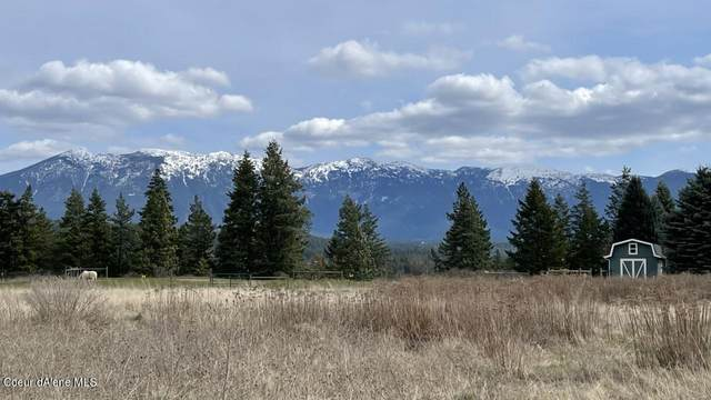 Lot 4 Heritage Way, Moyie Springs, ID 83845 (#21-3142) :: Northwest Professional Real Estate