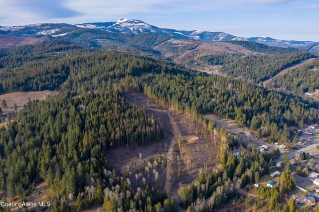 Nka Lot 2 Silver Valley Rd., Kingston, ID 83839 (#21-3161) :: Flerchinger Realty Group - Keller Williams Realty Coeur d'Alene