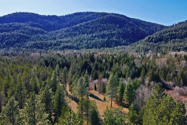 479450 Hwy 95, Sandpoint, ID 83864 (#21-3250) :: Prime Real Estate Group