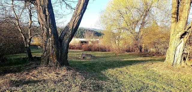266 Old Diamond Mill Rd, Oldtown, ID 83822 (#21-3353) :: Northwest Professional Real Estate