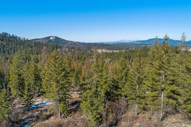 NNA E Rosewood Rd, St. Maries, ID 83861 (#21-3384) :: Amazing Home Network