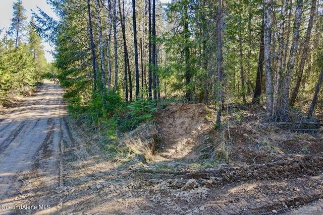 NNA Geronimo Lane, Sandpoint, ID 83864 (#21-3394) :: ExSell Realty Group
