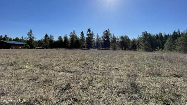 5 Acres Misty Meadow, Athol, ID 83801 (#21-3492) :: Link Properties Group