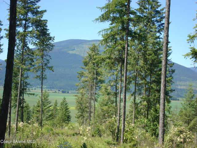 Tract 5 Smugglers Lane, Bonners Ferry, ID 83805 (#21-359) :: Prime Real Estate Group
