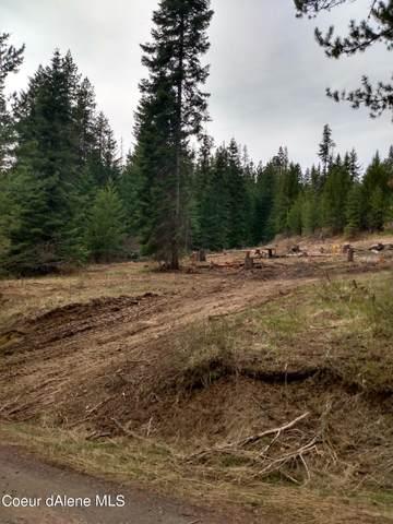 20 Meadowlark Dr, Fernwood, ID 83830 (#21-3793) :: Heart and Homes Northwest