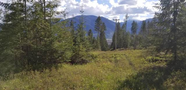 NNA New Chisholm Lane, Bonners Ferry, ID 83805 (#21-3928) :: ExSell Realty Group