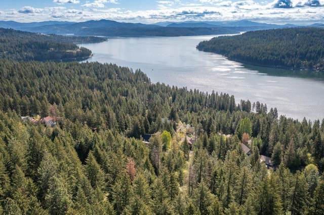 NKA S Lakeview Dr, Worley, ID 83876 (#21-3985) :: Team Brown Realty