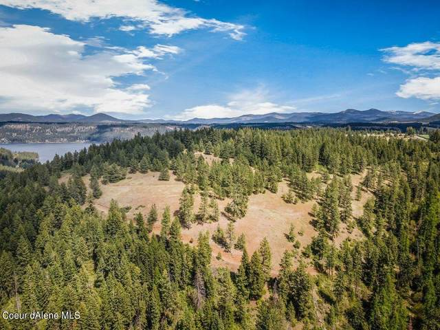 NNA W Conkling Park Dr, Worley, ID 83876 (#21-3996) :: Team Brown Realty